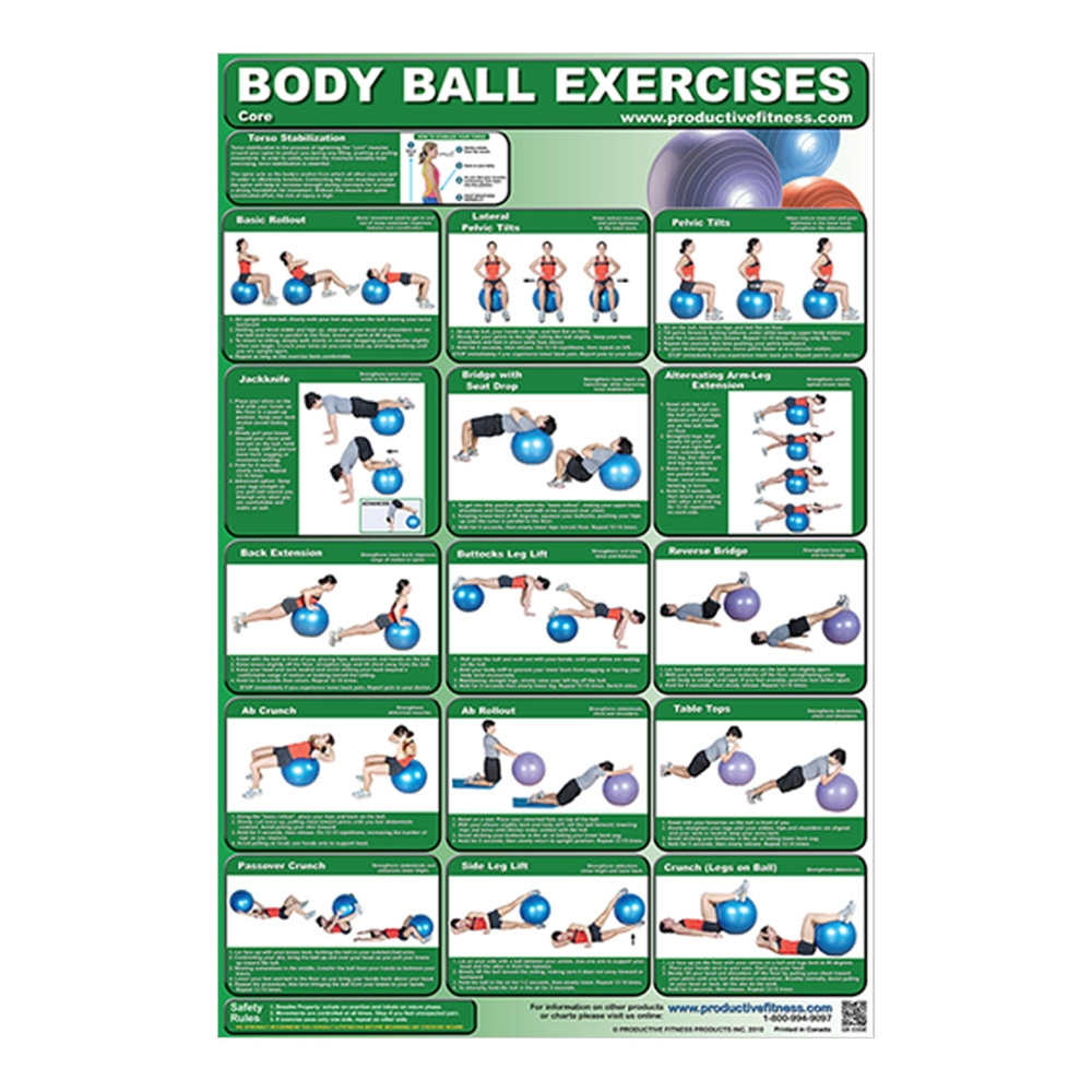 photo relating to Printable Exercise Ball Workouts named Poster Overall body Ball Workouts - Main - Laminated