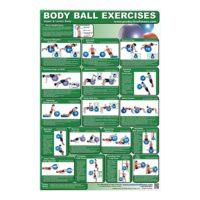 Poster Body Ball Exercises - Upper Body/Lower Body