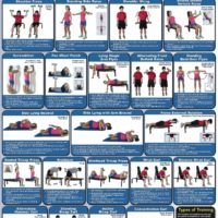 Poster Dumbbell Exercises - Shoulders & Arms