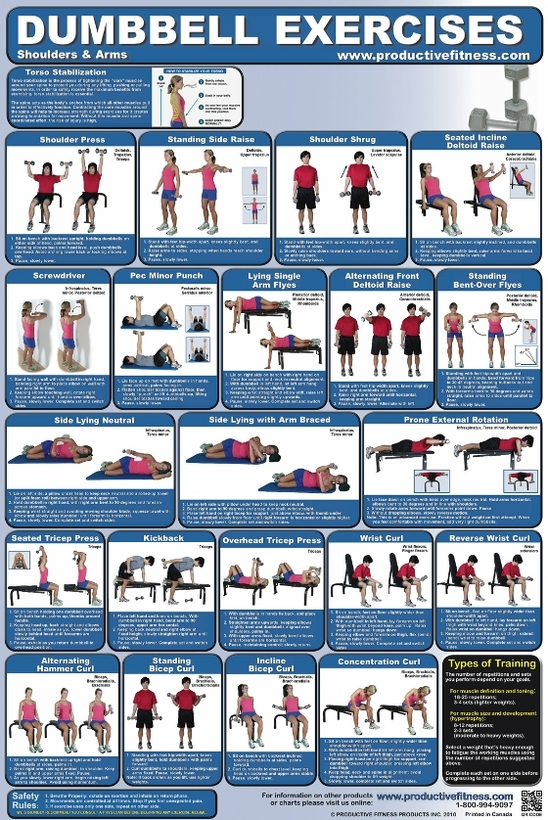 Poster Dumbbell Exercises - Shoulders and Arms- Laminated