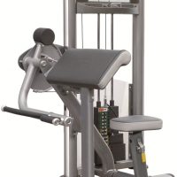 IT9003 Arm Curl Machine