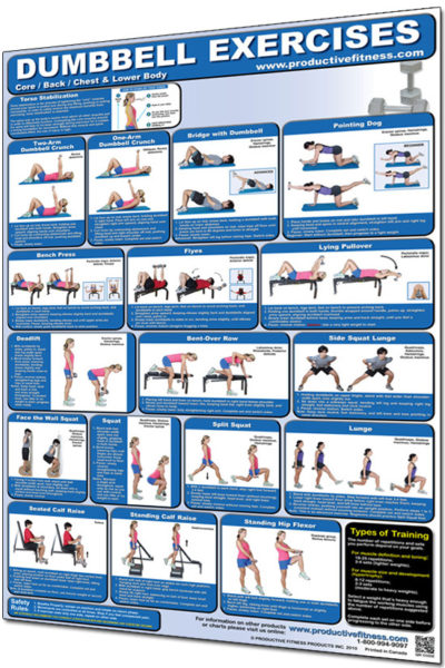 Poster Dumbbell Exercises - Lower Body/Core/Chest & Back