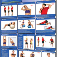 Poster Stretching - Upper Body