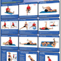 Poster Stretching - Lower Body