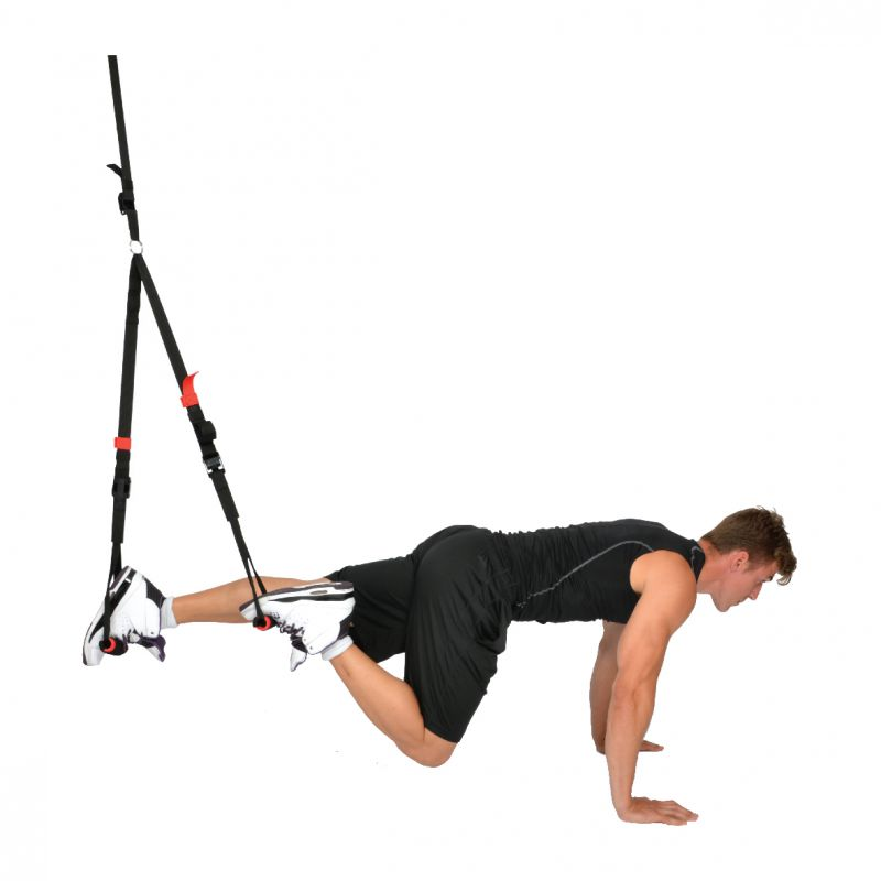 Trx Trainer For Sale: Physique Fitness Stores Since 1962