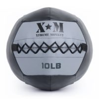 PFS Wall Medicine Ball