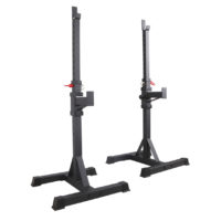 Viking Commercial Squat Stands