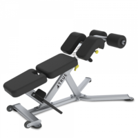 RUE FS-22 Low Back/Abdominal Bench